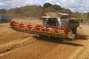 Imagem destaque Agricultura de Precisão